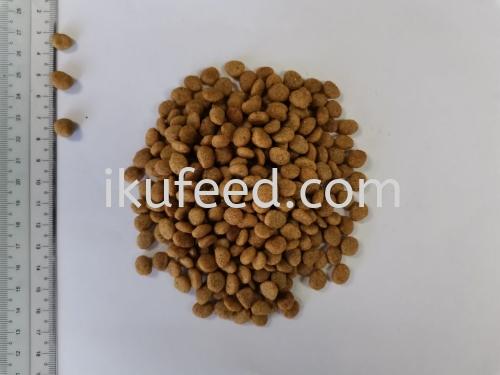 20KG DRY CAT FOOD - ROUND 2