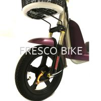 ELECTRIC BICYCLE EDIFIER 6
