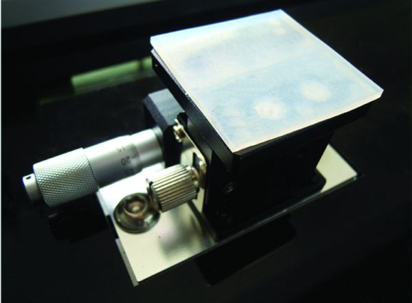Easy Alignment And Bed Adjust Device