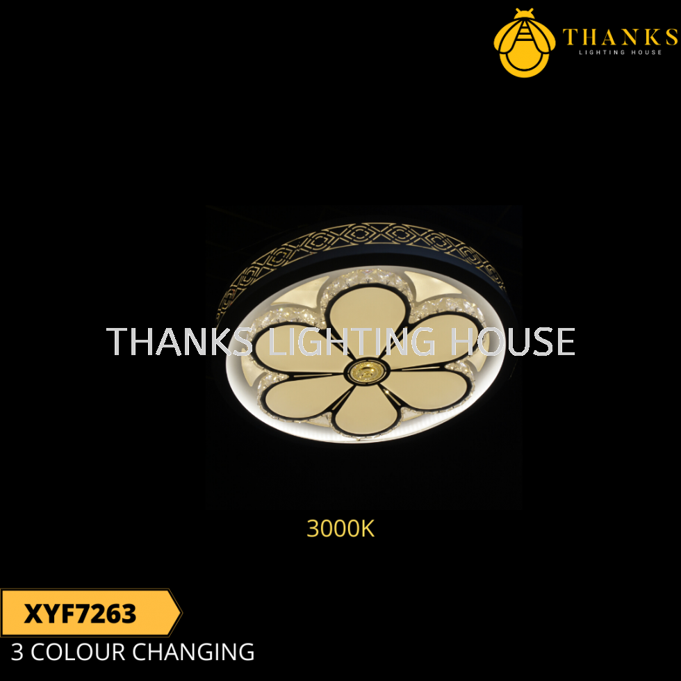 XYF7263 LED Ceiling Light