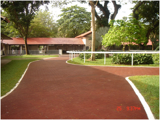 Recycled Rubber H Paving
