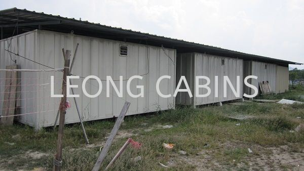 Cabin with Roofing