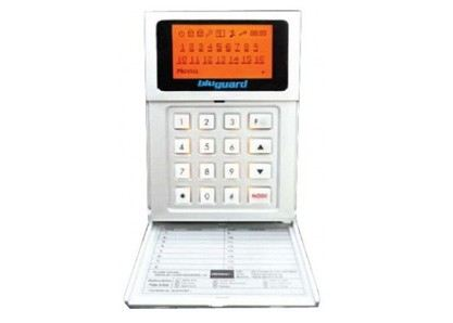 Alarm System (16 Zone With Voice)