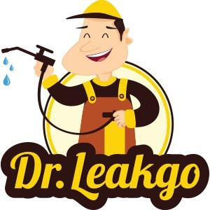 Dr.Leakgo