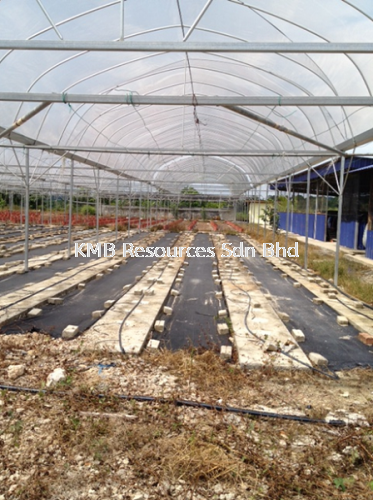 Green House Project at Batu Pahat 2014